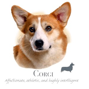 Corgi T-Shirt - Collage