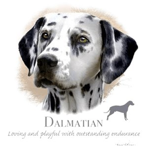 Dalmatian T-Shirt - Collage