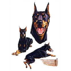Doberman Pinscher T-Shirt - Collage