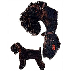 Kerry Blue Terrier T-Shirt - Collage