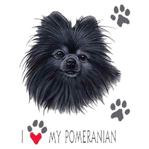 Pomeranian T-Shirt - Collage