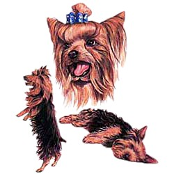 Yorkshire Terrier T-Shirt - Collage