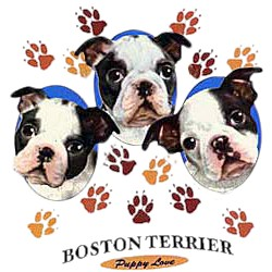 Boston Terrier T-Shirt - Puppies and Paws