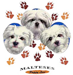 Maltese T-Shirt - Puppies and Paws