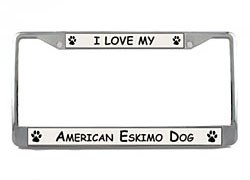 American Eskimo Dog License Plate Frame