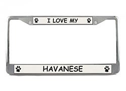 Havanese License Plate Frame