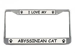 Abyssinian Cat License Plate Frame