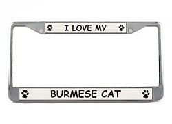 Burmese Cat License Plate Frame