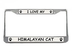Himalayan Cat License Plate Frame