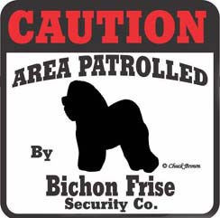 Bichon Frise Bumper Sticker Caution