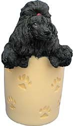 Black Poodle Pencil Holder
