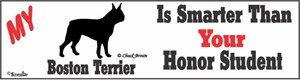 Boston Terrier Bumper Sticker Honor Student