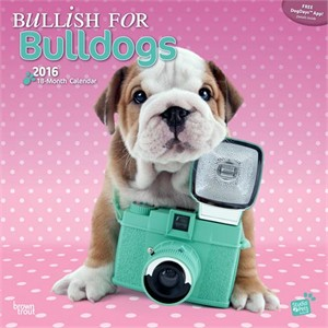  Bullish For Bulldogs By Myrna Calendar 2013