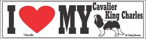 Cavalier King Charles Bumper Sticker I Love My