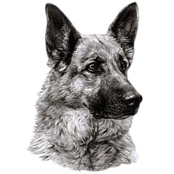 German Shepherd T-Shirt - Eye Catching Detail