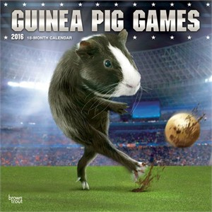  Guinea Pig Games Calendar 2013