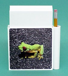 Red Eyed Tree Frog Hold-a-Note