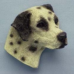 Dalmatian Magnet