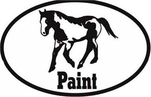 Paint Horse Bumper Sticker Euro