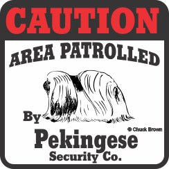 Pekingese Bumper Sticker Caution