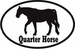 Quarter Horse Bumper Sticker Euro