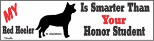 Red Heeler Bumper Sticker Honor Student