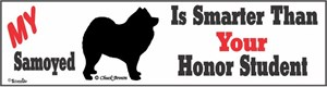 Samoyed Bumper Sticker Honor Student