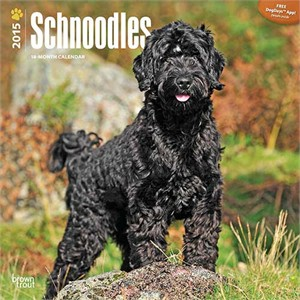  Schnoodles Calendar 2013