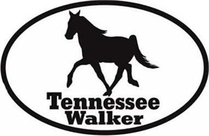 Tennessee Walking Horse Bumper Sticker Euro